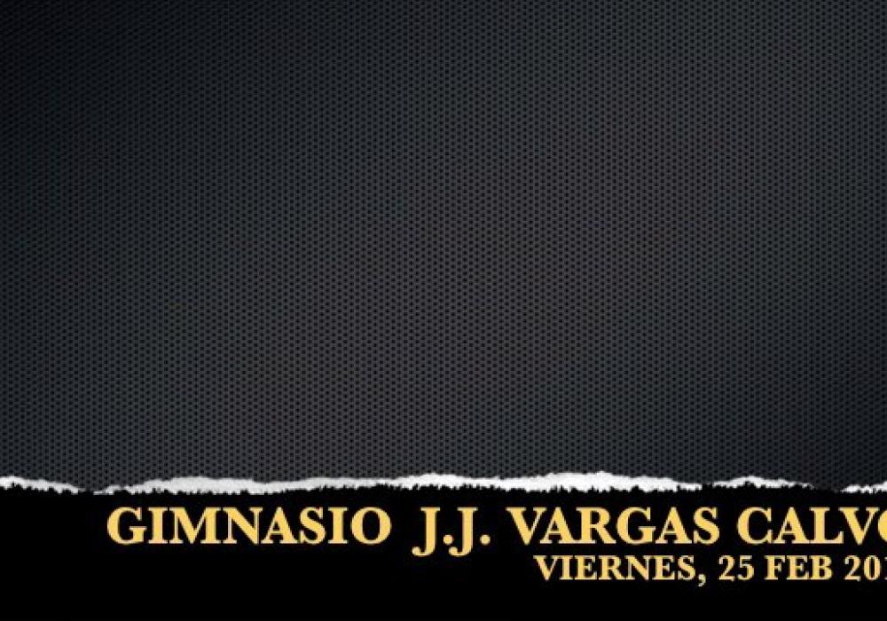 PROYECTO: Juventud Creativa (2011)